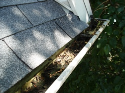 gutter cleaning bloomington il