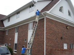 gutter cleaning in illinois