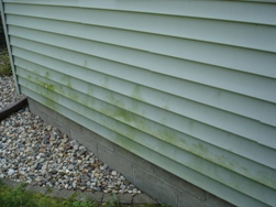 vinyl siding washed bloomington, il